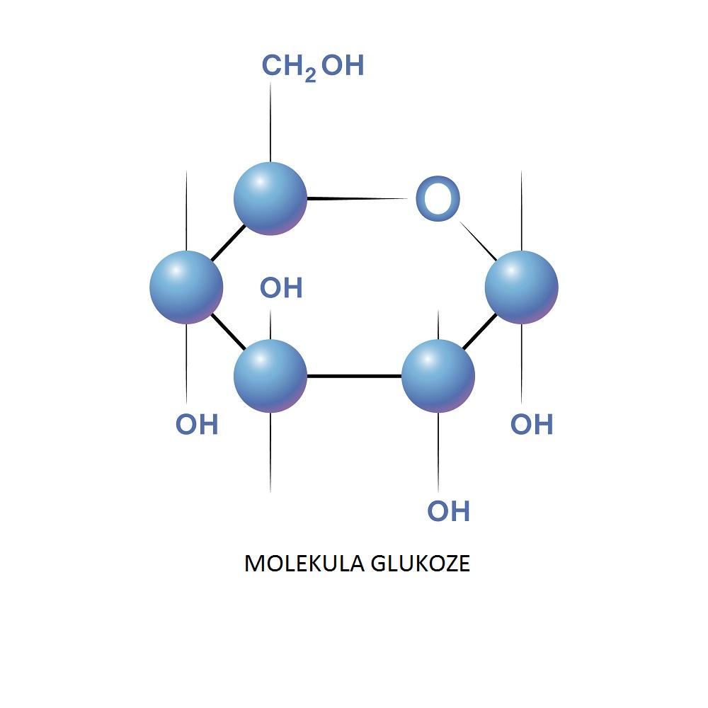 molekula glukoze